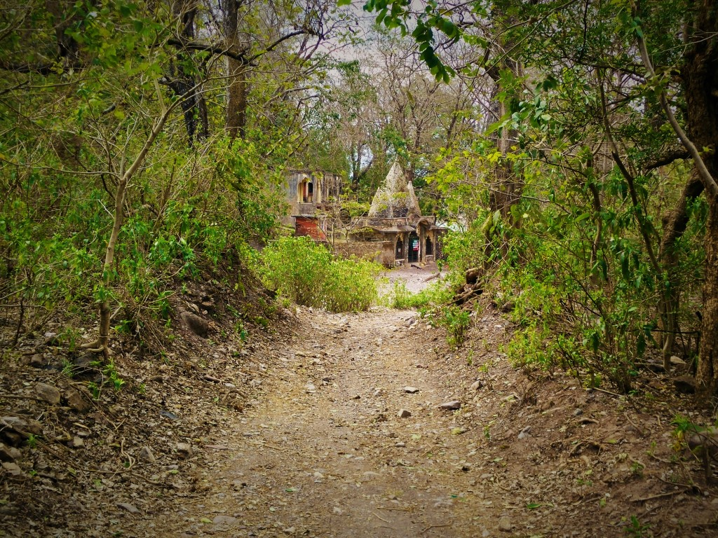 Ashram at end of dirt path