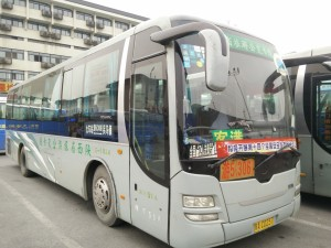 Terracotta Warriors Bus No.5(306)